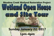 Wetland Open House and Site Tour Sunday in Meadow Creek