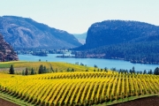 This new partnership will make it easier for customers in Canada's two largest provinces to enjoy B.C. wine.