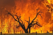 Learn how to defend your property against the danger of wildfires...this Tuesday evening