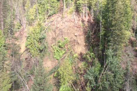 A mudslide observed above Zwicky Road was estimated to be 10,000 to 20,000 cubic metres, 100m long and 75m wide. — Photo courtesy RDCK